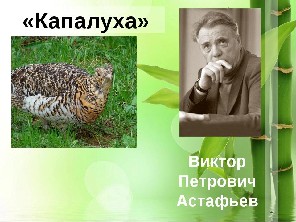 * «Капалуха» Виктор Петрович Астафьев