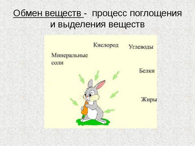 Обмен веществ - процесс поглощения и выделения веществ