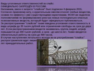 Виды уголовных ответственностей за спайс: ОФИЦИАЛЬНО ЗАПРЕЩЁН В РОССИИ. Напом