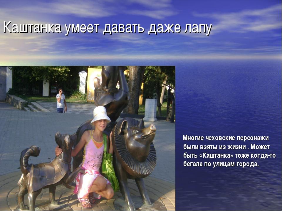 Каштанка умеет давать даже лапу Многие чеховские персонажи были взяты из жизн...