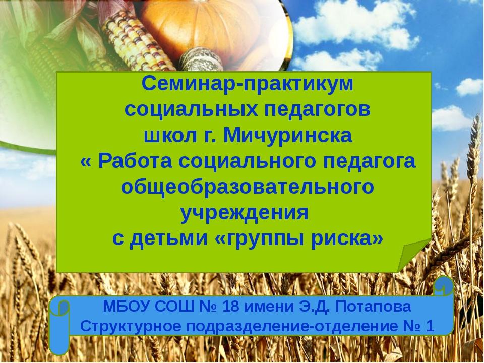 Семинар-практикум социальных педагогов школ г. Мичуринска « Работа социально...