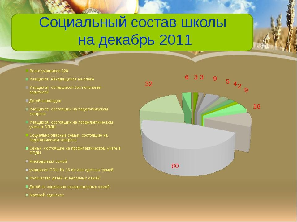 Социальный состав школы на декабрь 2011