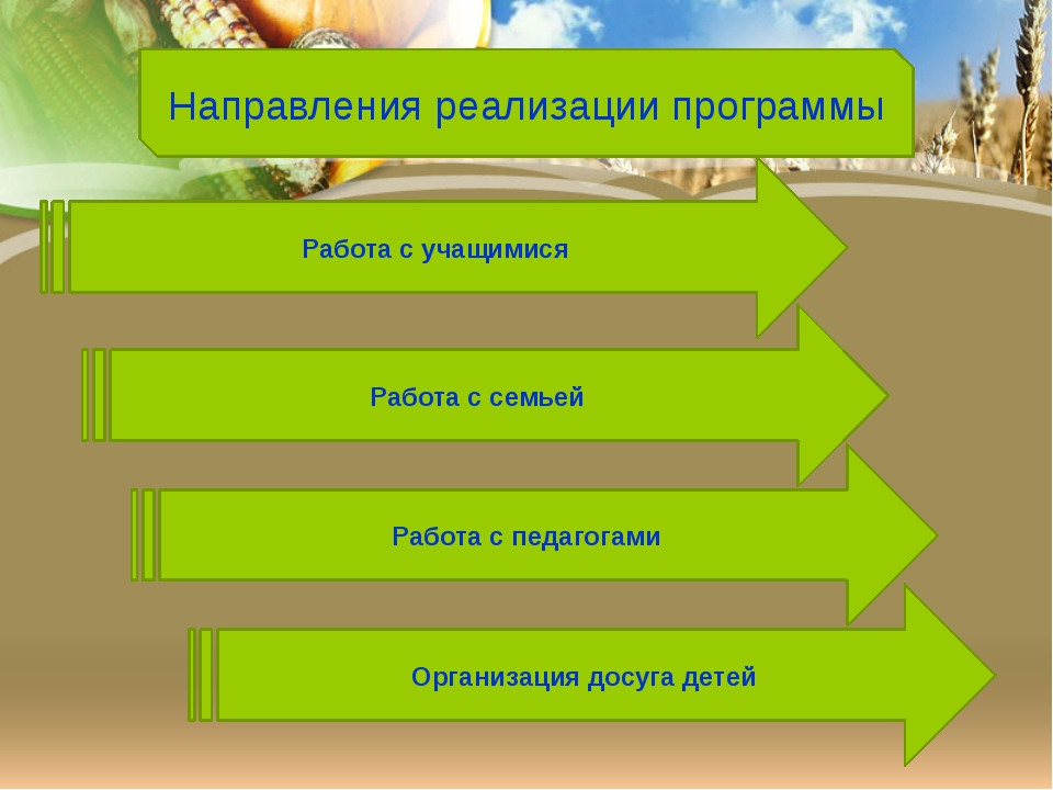 Направления реализации программы Работа с учащимися Работа с семьей Работа с...