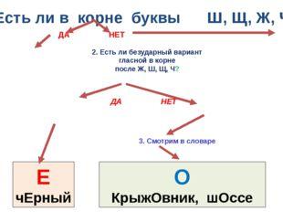 1. Есть ли в корне буквы Ш, Щ, Ж, Ч ? 3. Смотрим в словаре О КрыжОвник, шОссе