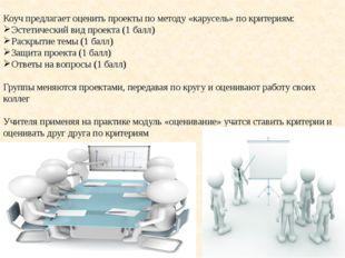 Коуч предлагает оценить проекты по методу «карусель» по критериям: Эстетичес
