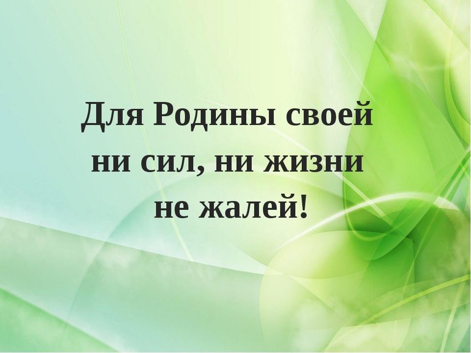 Для Родины своей ни сил, ни жизни не жалей!