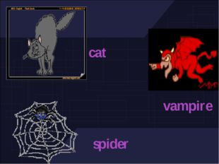 spider vampire cat