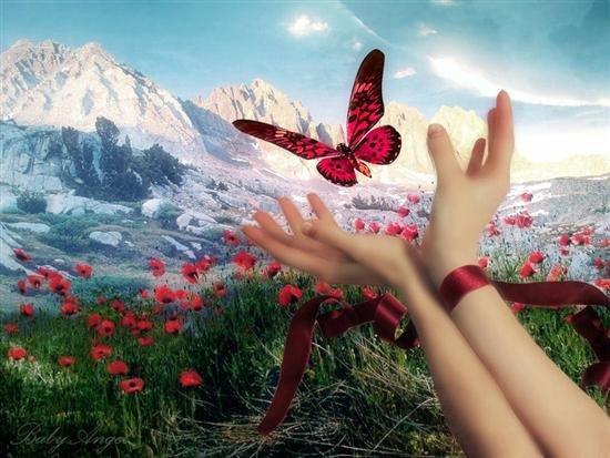 Руки и бабочка