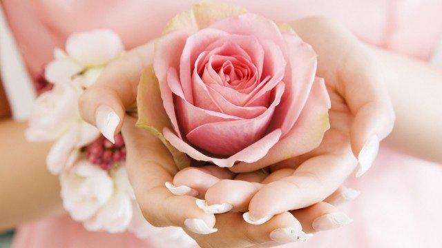Роза в ладонях