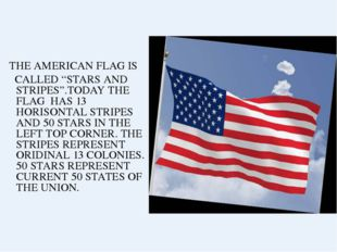 "THE AMERICAN FLAG IS CALLED ""STARS AND STRIPES"".TODAY THE FLAG HAS 13 HORISO"