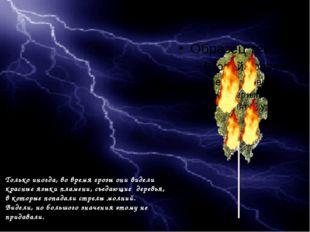 Только иногда, во время грозы они видели красные языки пламени, съедающие де