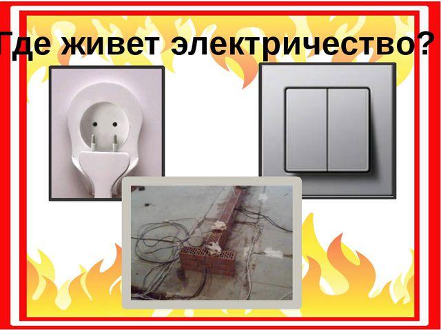 Где живет электричество?