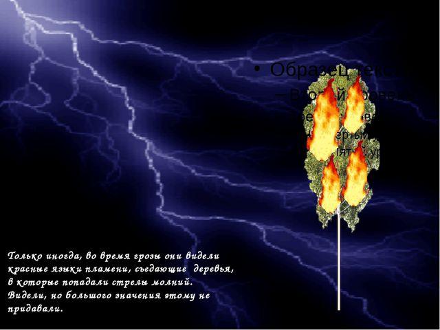 Только иногда, во время грозы они видели красные языки пламени, съедающие де...