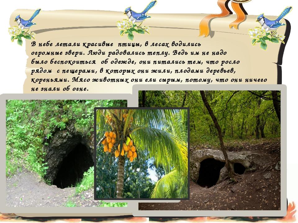 В небе летали красивые птицы, в лесах водились огромные звери. Люди радовалис...