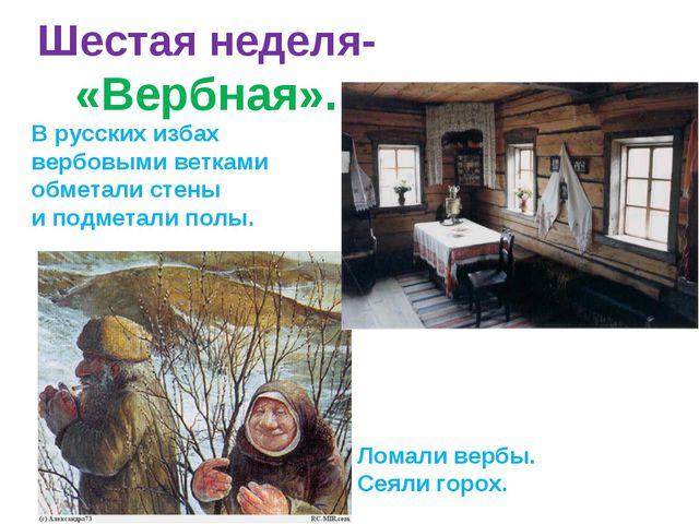 Шестая неделя- «Вербная». В русских избах вербовыми ветками обметали стены и...