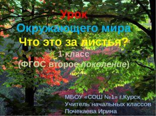 Урок Окружающего мира Что это за листья? 1 класс (ФГОС второе поколение) МБОУ