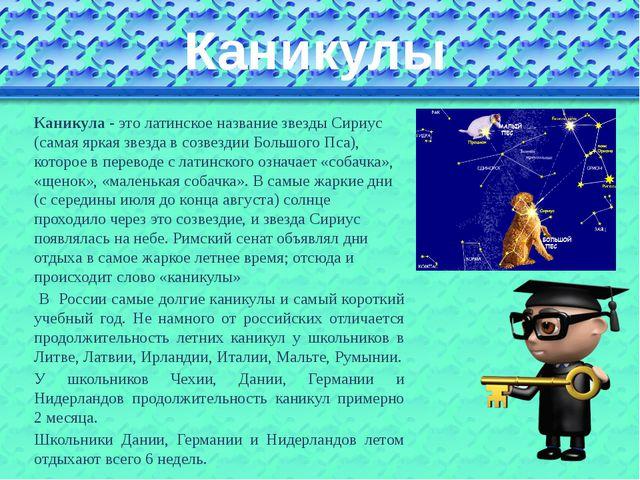 Каникулы Каникула - это латинское название звезды Сириус (самая яркая звезда...