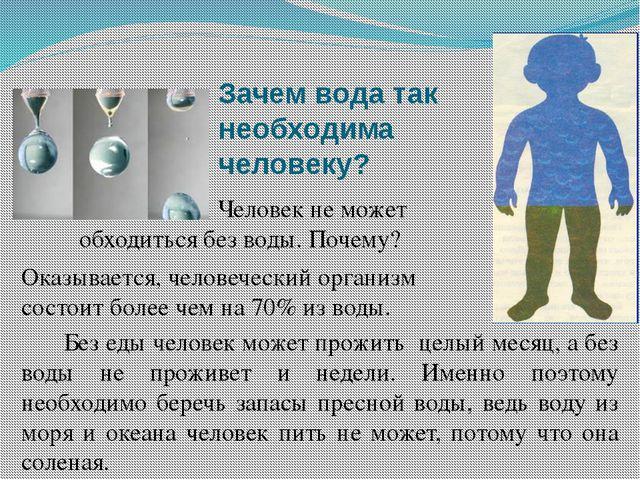 Зачем вода так необходима человеку? Человек не может обходиться без воды. Поч...
