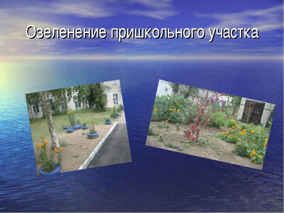Озеленение пришкольного участка