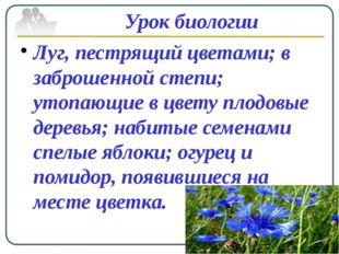 Урок биологии Луг, пестрящий цветами; в заброшенной степи; утопающие в цвету
