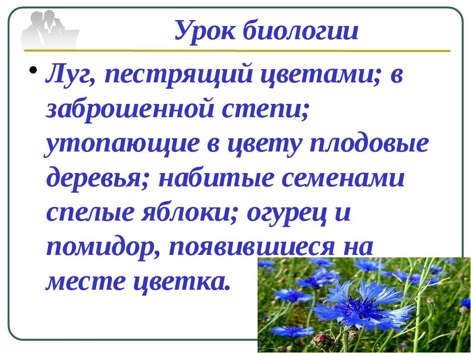 Урок биологии Луг, пестрящий цветами; в заброшенной степи; утопающие в цвету...