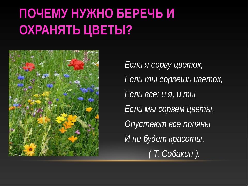 ПОЧЕМУ НУЖНО БЕРЕЧЬ И ОХРАНЯТЬ ЦВЕТЫ? Если я сорву цветок, Если ты сорвешь цв...