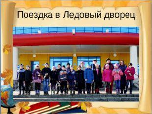 Поездка в Ледовый дворец