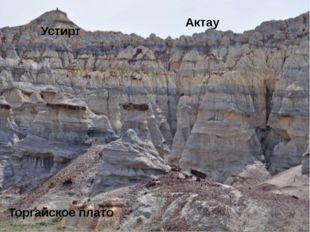 Приаральские Каракумы Улькен Борсык Присырдарьинская равнина Кызылкум Приарал