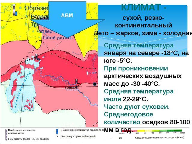 Пустыня Терескен Житняк Жузгун Тамариск Саксаул Чёрная полынь