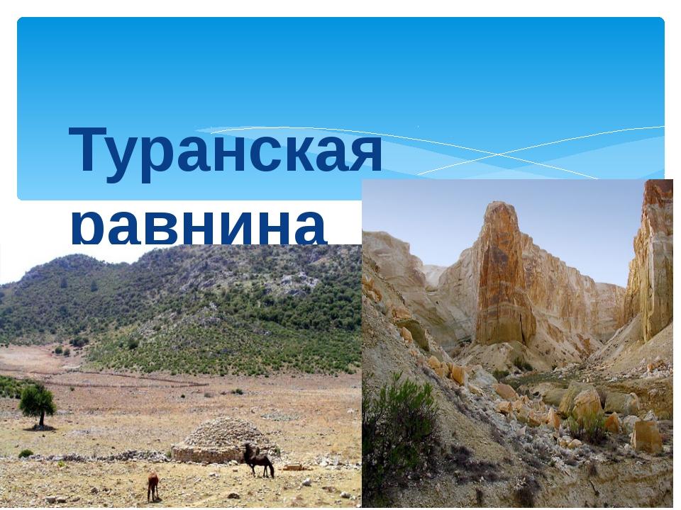 Физико-географическое районирование Стр. 28, атлас Туранская равнина - это об...