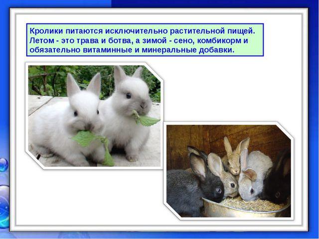 Кролики питаются исключительно растительной пищей. Летом - это трава и ботва,...
