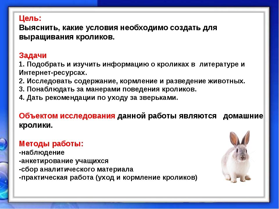 Цель: Выяснить, какие условия необходимо создать для выращивания кроликов. За...
