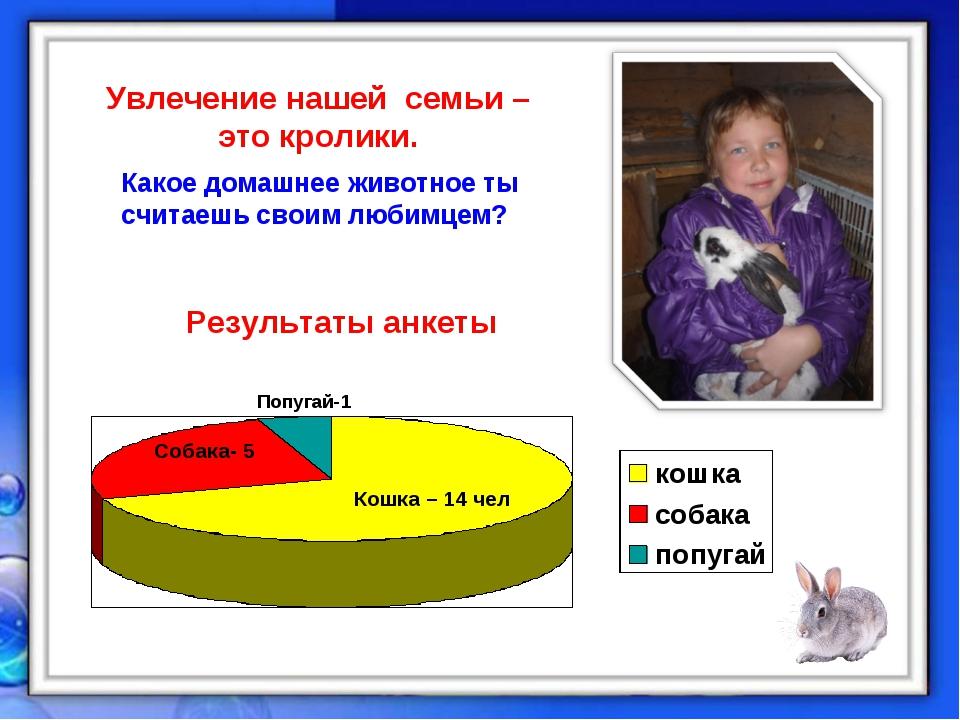 Результаты анкеты Какое домашнее животное ты считаешь своим любимцем? Увлечен...