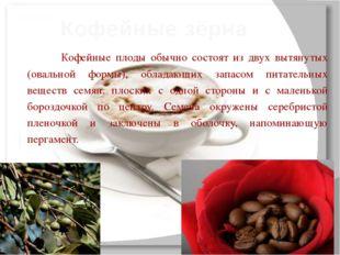 Кофейные плоды обычно состоят из двух вытянутых (овальной формы), обладающи