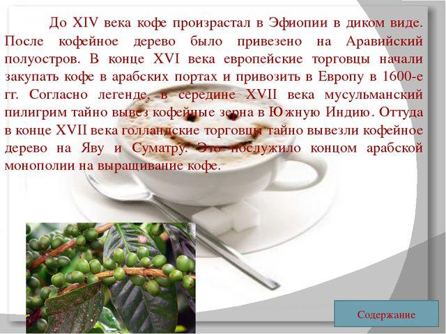 До XIV века кофе произрастал в Эфиопии в диком виде. После кофейное дерево...