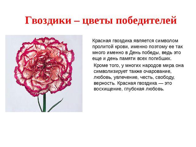 Гвоздики – цветы победителей Красная гвоздика является символом пролитой кров...