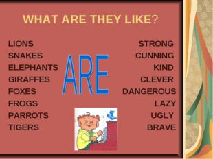 WHAT ARE THEY LIKE? LIONS SNAKES ELEPHANTS GIRAFFES FOXES FROGS PARROTS TIGER