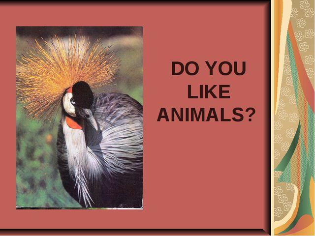 DO YOU LIKE ANIMALS?