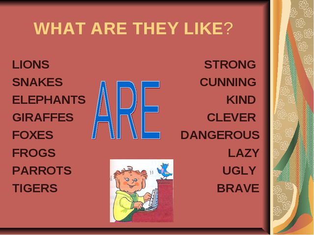 WHAT ARE THEY LIKE? LIONS SNAKES ELEPHANTS GIRAFFES FOXES FROGS PARROTS TIGER...