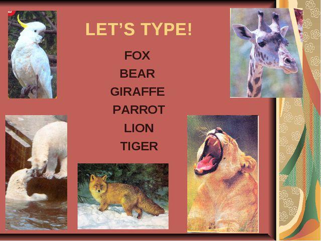 LET'S TYPE! FOX BEAR GIRAFFE PARROT LION TIGER