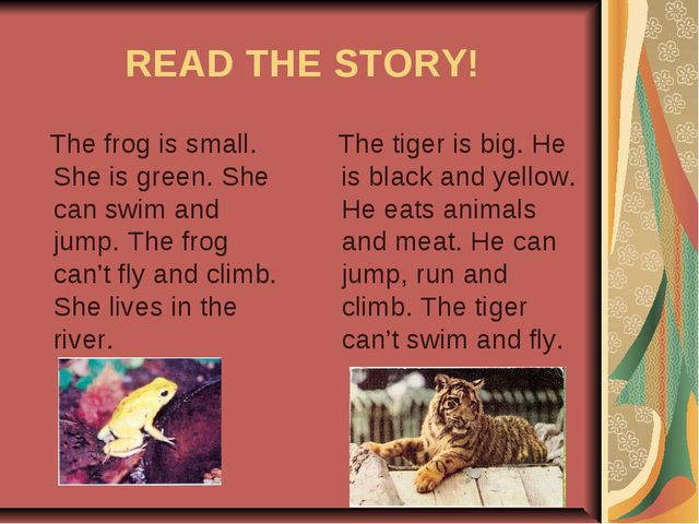 READ THE STORY! The frog is small. She is green. She can swim and jump. The f...