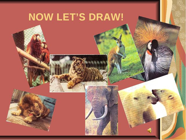 NOW LET'S DRAW!