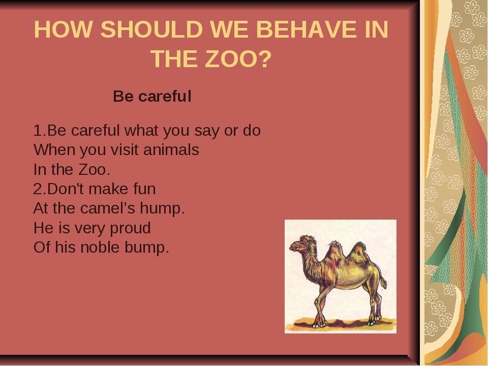 HOW SHOULD WE BEHAVE IN THE ZOO? Be careful 1.Be careful what you say or do W...