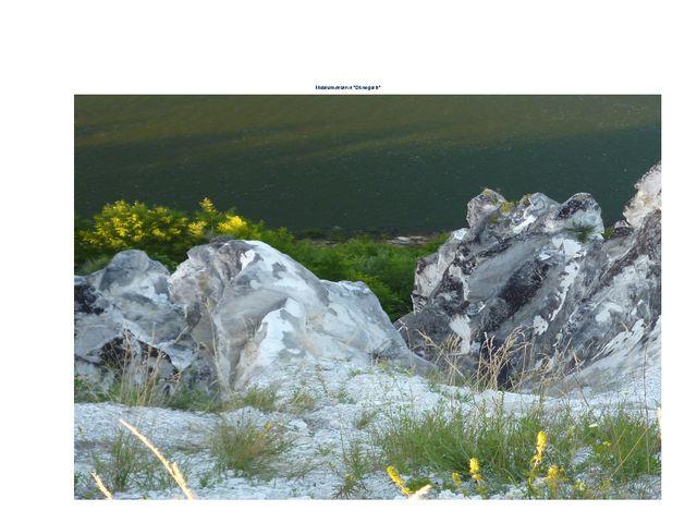 "Museum-reserve ""Divnogorie"""