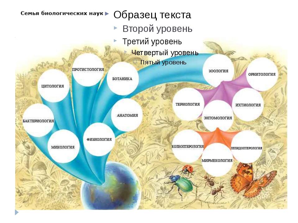 Гиперссылка – пазлы можно загрузить с сайта «Инфоурок» http://infourok.ru/pa...