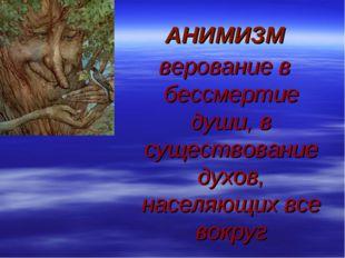 АНИМИЗМ верование в бессмертие души, в существование духов, населяющих все во