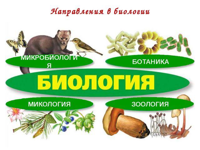 Направления в биологии МИКРОБИОЛОГИЯ БОТАНИКА МИКОЛОГИЯ ЗООЛОГИЯ