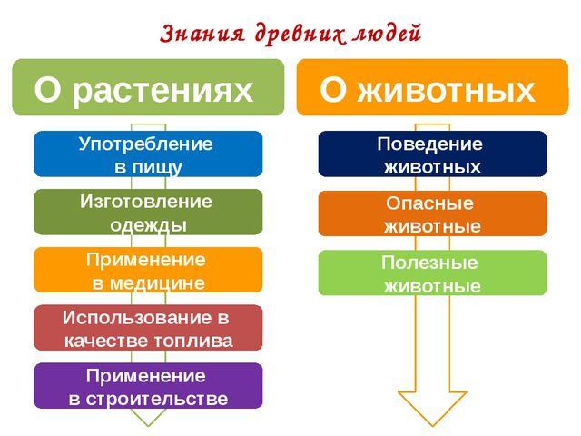 Применение в строительстве Использование в качестве топлива Применение в мед...