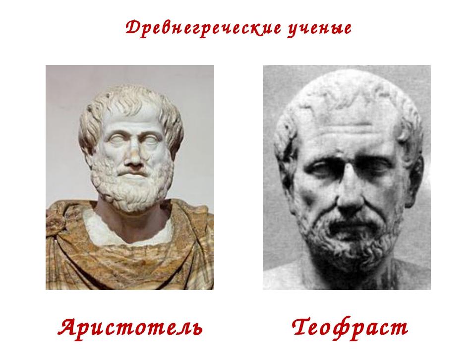 Древнегреческие ученые Аристотель Теофраст