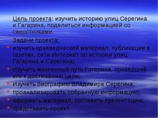 Цель проекта: изучить историю улиц Серегина и Гагарина, поделиться информац